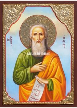 Icoana cu Sfântul Ilie - Icoane pictate